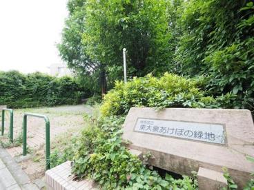 東大泉あけぼの緑地の画像1