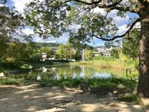 樋之池公園
