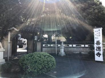 善徳寺の画像1