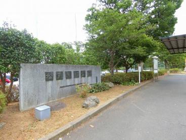 松戸運動公園の画像1