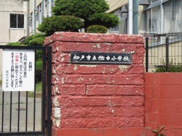 松戸市立稔台小学校の画像1