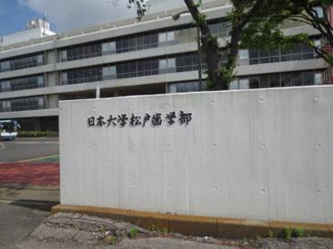 私立日本大学松戸歯学部の画像1