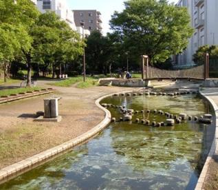 大横川親水公園の画像1