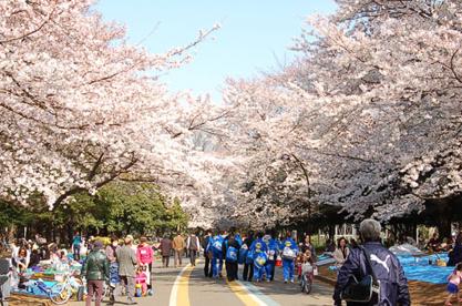 駒沢公園の画像1