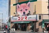 ペットの専門店 コジマ 八王子店