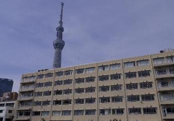 墨田中学校の画像1