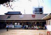 東百舌鳥保育園