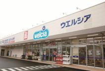 ウエルシア江戸川本一色店