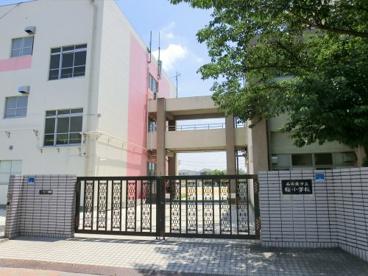 名古屋市立桜小学校の画像1