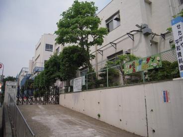 玉川小学校の画像2