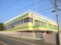 つくしの幼稚園