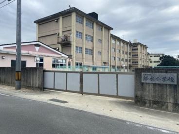 大牟田市立銀水小学校の画像1