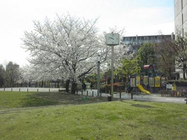 めぐろ区民キャンパス公園の画像1