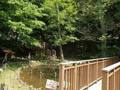 上野毛自然公園の画像