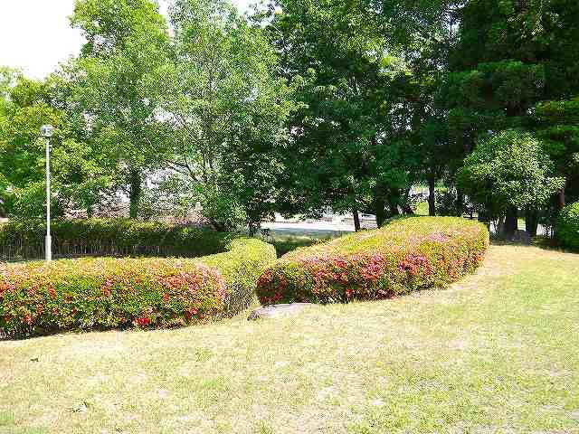中山泉ヶ丘緑地の画像