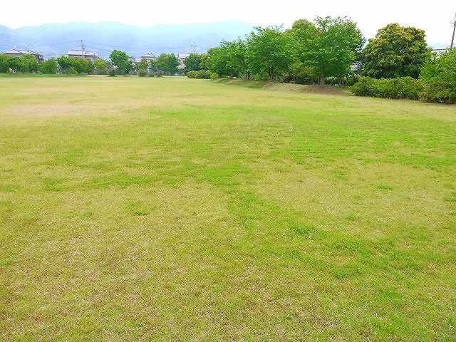 新池公園の画像