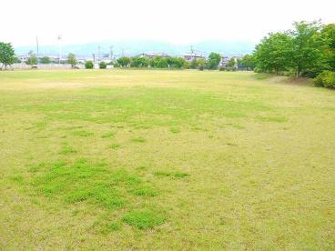 新池公園の画像2