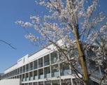 志茂田小学校