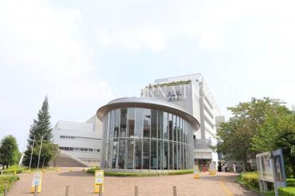 日本大学芸術学部の画像1