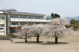 青山小学校の画像1