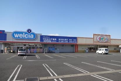 ウエルシア小山羽川店の画像1