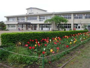 松園小学校の画像1