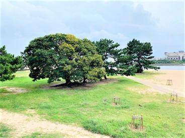御前浜公園の画像1