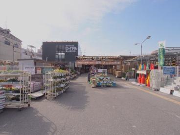 ロイヤルホームセンター矢賀店の画像1