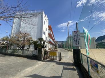 柳河小学校の画像1