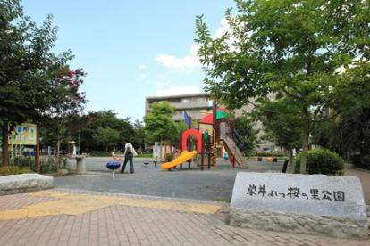 染井吉野桜記念公園の画像1