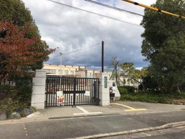 京都市立大宮小学校の画像1