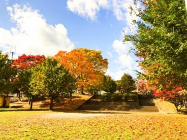 今原公園の画像1