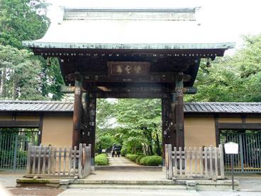 豪徳寺の画像1