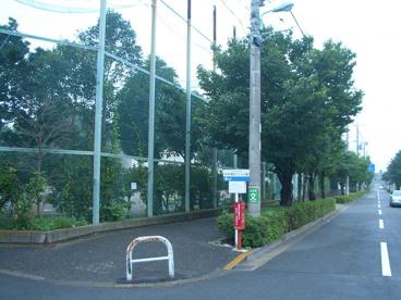 駒沢中学校の画像3