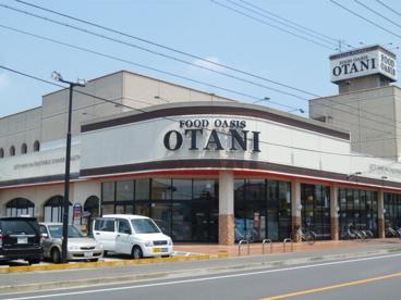 フードオアシスOTANI(オータニ) 岡本店の画像1