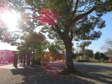 にしき西児童公園の画像3