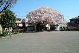 井土ヶ谷上町公園の画像1