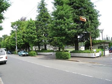 池尻小学校の画像3
