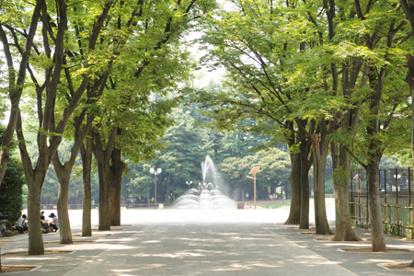 世田谷公園の画像2