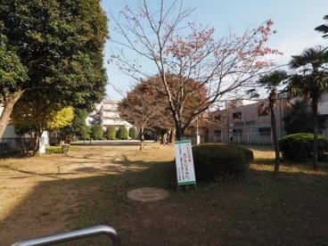 青三公園の画像1
