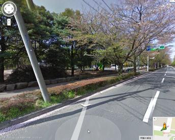 県立和光樹林公園の画像1