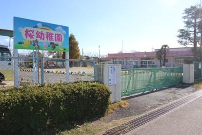 つくば市立桜幼稚園の画像1