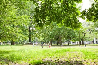 都立戸山公園大久保地区の画像1