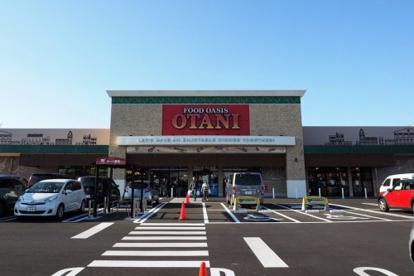 フードオアシスOTANI一の沢店の画像1