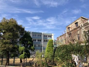 成城学園中学校 成城高等学校の画像1