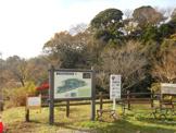 赤羽緑地(自然観察ふれあい公園)