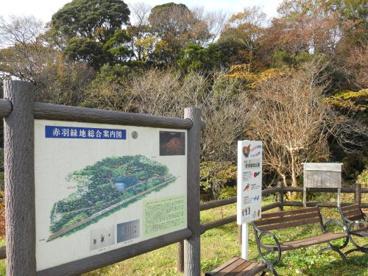 赤羽緑地(自然観察ふれあい公園)の画像2
