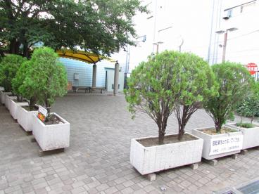 区立ふれあい広場の画像4