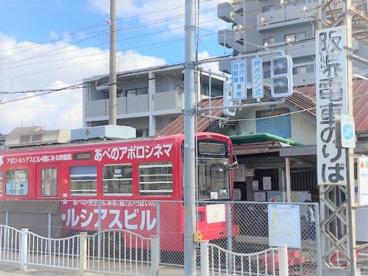 南海本線「浜寺公園」駅の画像3