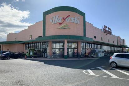 FOOD PLAZA Hayashi(フード プラザ ハヤシ) 六ツ野店の画像1
